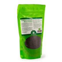 Graines de broccoli BIO – Source naturelle de sulforaphane et glucoraphane