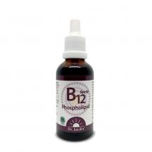 B12 Phospholipide