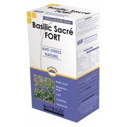 Basilic Sacré FORT