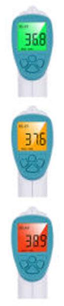 Thermomètre frontal - Ecran de mesure