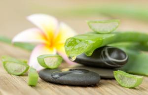 Recettes de soins du visage, de la peau et du corps à base d'Aloe vera