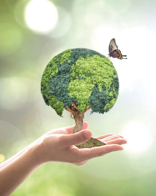 Dr. Jacob's® - Intégrité et concepts innovants qui s'inspirent de la nature